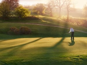 Mens and Ladies Stableford